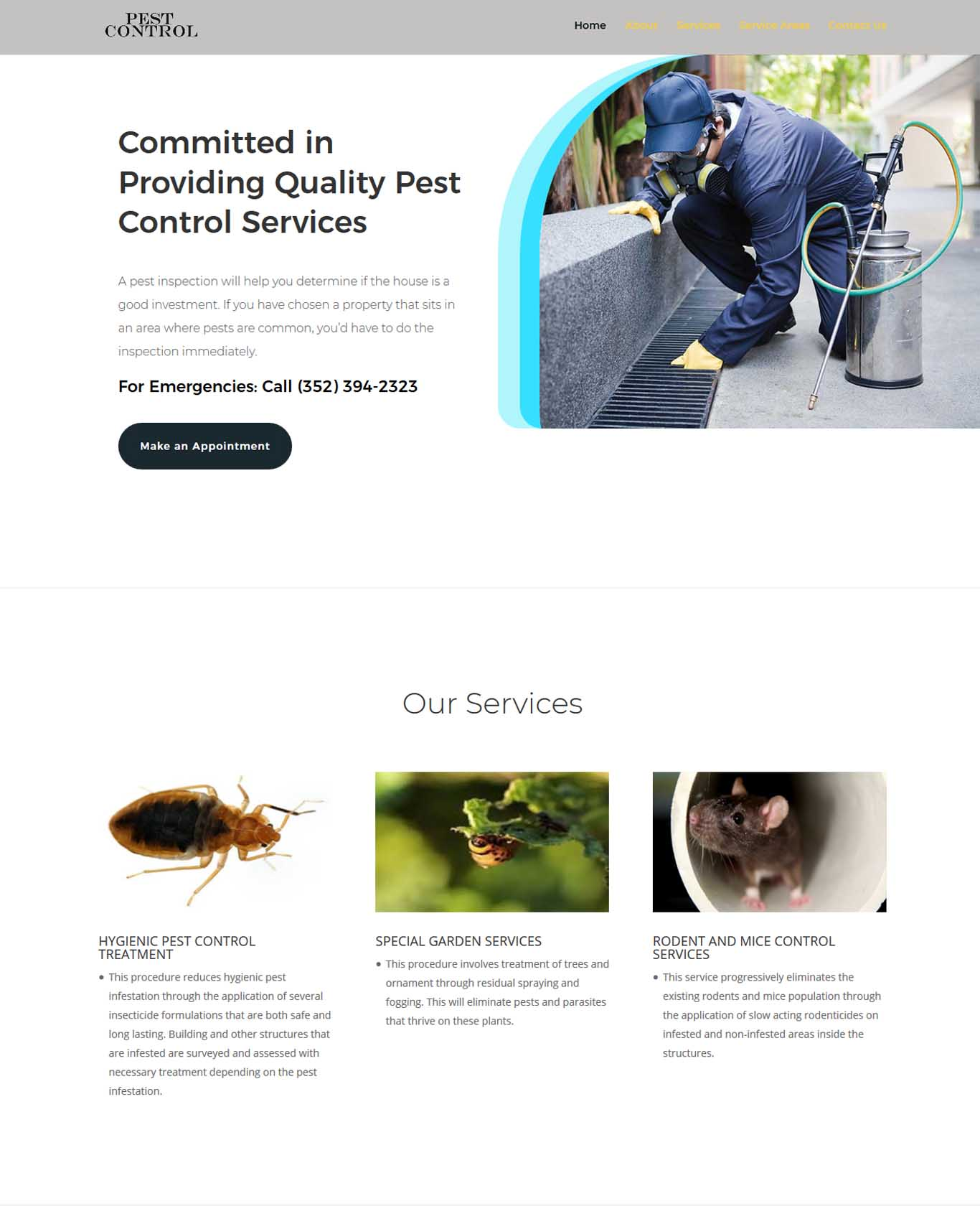 Website Work 1